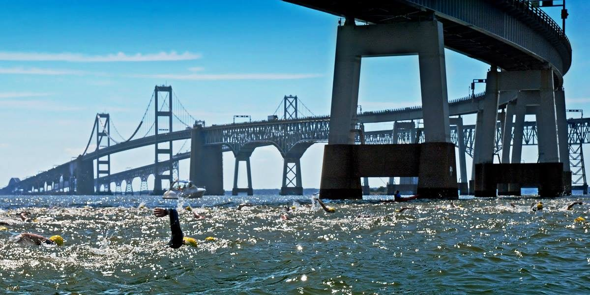 The Great Chesapeake Bay Swim
